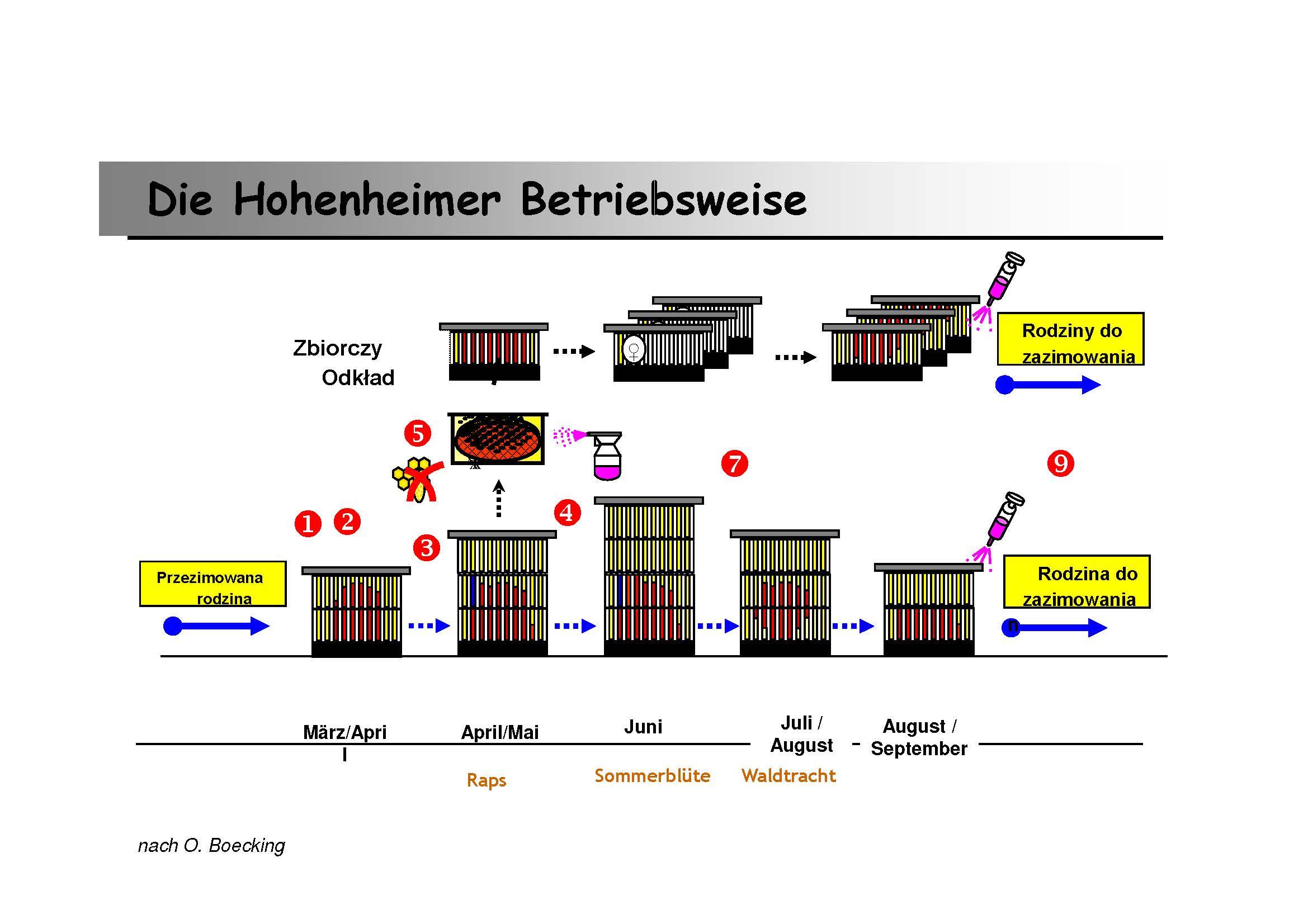 Hohenheimer_Betriebsweise_-_Arbeitsanleitung__Kompatibilitaetsmodus_